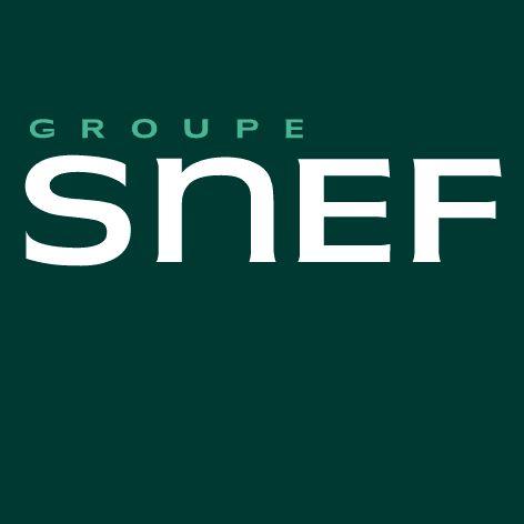 Logo de l'entreprise SNEF