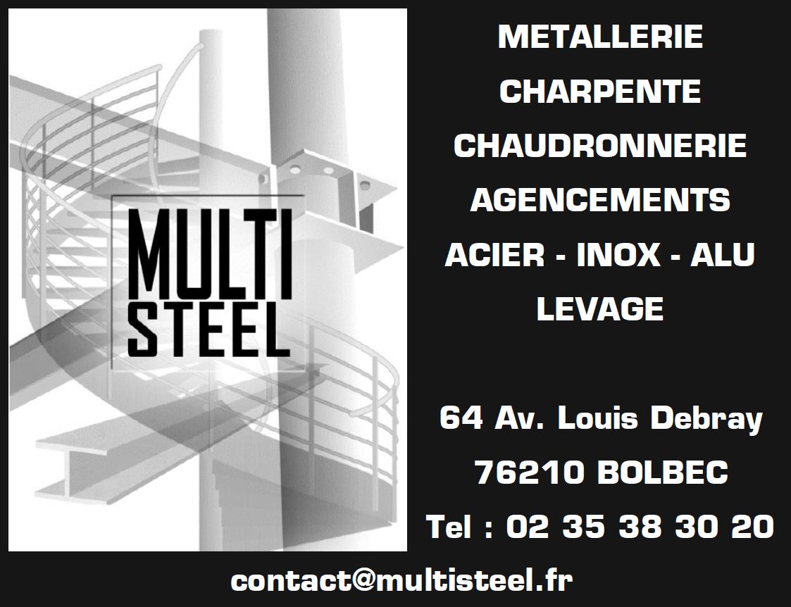 Logo MULTI STEEL