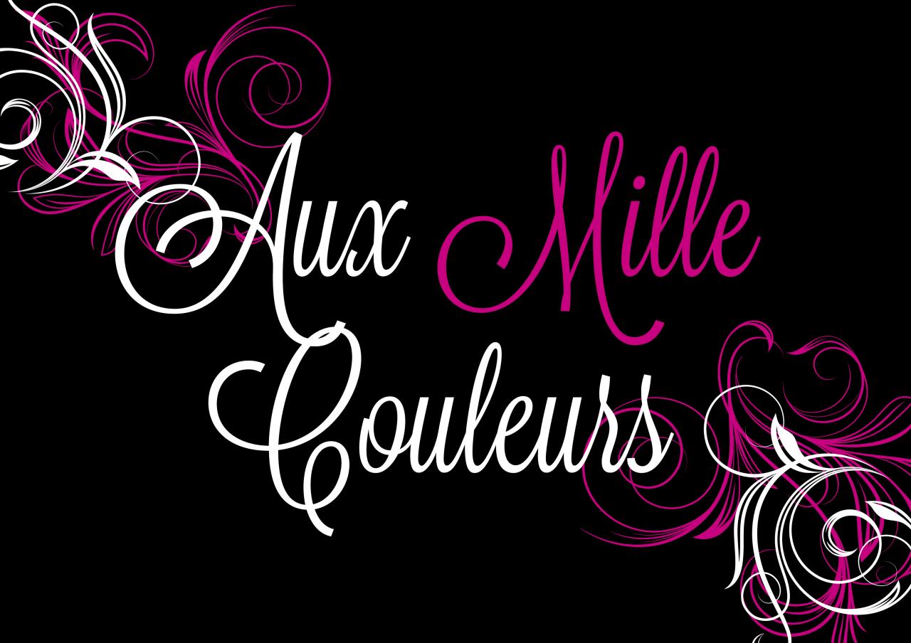 Logo de l'entreprise AUX MILLE COULEURS